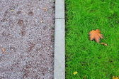 The middle of autumn. — Stock Photo