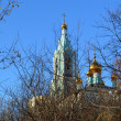 Stock Photo: Golden Domes