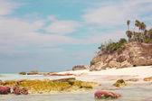 Half Moon Bay rock formation — Stock Photo
