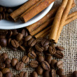 Coffee cup with beans and cinnamon sticks — Stock Photo
