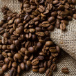 Coffee beans on the sacking - Stockfoto