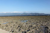 Ocean after ebb tide, the island of Gili Meno, Indonesia — Stock Photo