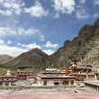 Buddhist monastery in Tibet — Stock Photo #9569868