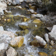 Stock Photo: Small mountain river