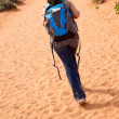 Woman walking the desert - Stock Photo