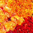 Royalty-Free Stock Photo: Flowers in orange and red