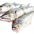 Raw fish - Stock Photo