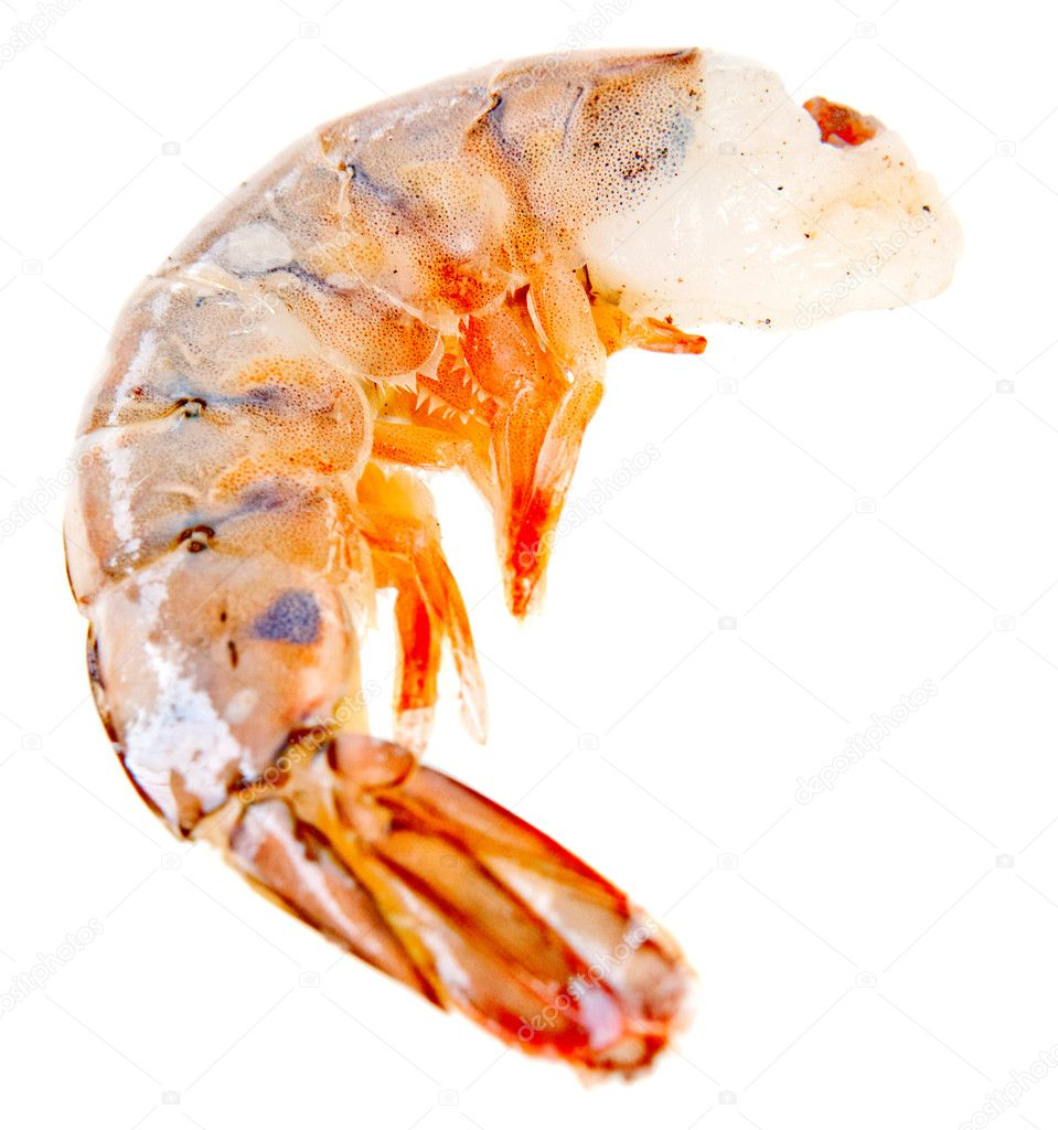 Frozen shrimp or prawn - isolated over a white background  Stock Photo #10589172