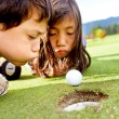 Stock Photo: Golf players cheating