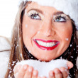 Stock Photo: White Christmas