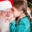 Stock Photo: Christmas secret
