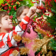 Decorating a Christmas tree - Foto Stock