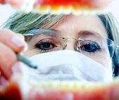 Dentista en el trabajo — Foto de Stock