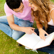 Couple studying outdoors - Stock Photo