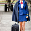 Female flight attendant — Stock Photo