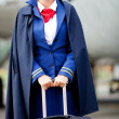 Stock Photo: Female flight attendant