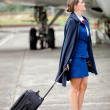 Beautiful air hostess — Stock Photo #9283815