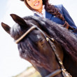 Horsewoman riding a horse - Stock Photo