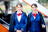 Beautiful flight attendants — Stock Photo