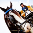Woman driving a horse carriage — Stock Photo