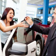 Stock Photo: Wombuying new car