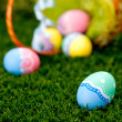 Easter eggs — Stock Photo #9790342