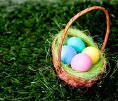 Plain Easter Eggs — Stock Photo
