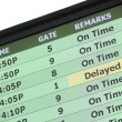 Stock Photo: Airport Travel Delay Sign