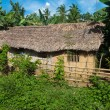 Primitive house — Stock Photo #10141724