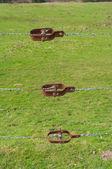 Arame farpado — Fotografia Stock