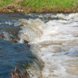 Rapid in a river — Stock Photo