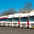 Parked trucks — Stock Photo #9195276