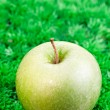 Green apple close up — Stock Photo
