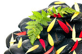 Green fern, red and yellow gerbera petals on black zen stone clo — Stockfoto