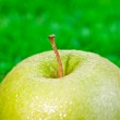 Green apple on grass extreme close up — Stock Photo