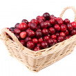 Fresh cranberry in the wicker basket made in studio on white background — Stock Photo