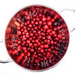 Cranberry in the round colander made in studio isolated on white background — Stock Photo