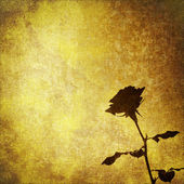 Grunge parchment with rose flower, textile vintage abstract background — Stock Photo