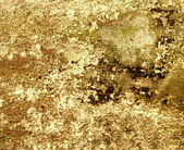Brown grunge paint wall background or texture — Foto de Stock