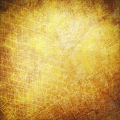 Sheet of old paper, vintage parchment with grid as grunge background — Stock Photo
