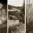 Old traditional photography - Rural views, triptych — Stock Photo #9574464