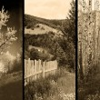 Old traditional photography - Rural views, triptych — Stock Photo #9575656