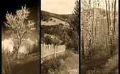 Old traditional photography - Rural views, triptych — Stock Photo