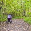 A baby carriage on the road in autumn park. — Stock Photo
