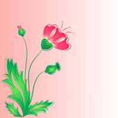 The red poppy with buds and leaves. — Stock Vector