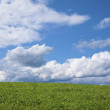 Foto Stock: Green field and blue sky with clouds.