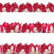 Three different frames with the red-white tulips, isolated on a — Stock Photo #9174041