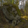A big stone on the some small stones in the taiga. — Stock Photo