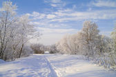 Snow footpath, trees in snow and the blue sky with clouds. — Stock Photo