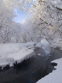 Nonfreezing stream in the winter, trees in snow. — Stock Photo